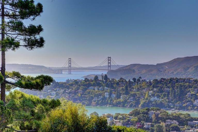 Single Family Homes at 1820 Mountain View Drive Tiburon, California 94920 United States