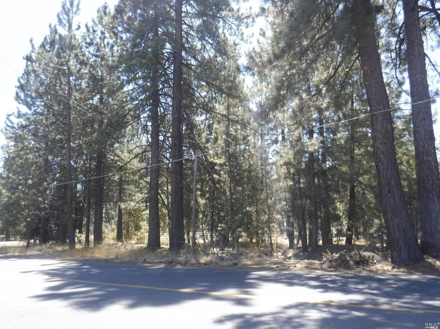 Single Family Homes bei 360 Moody Meadow Road, Lake Almanor Lake Almanor, Kalifornien 96020 Vereinigte Staaten