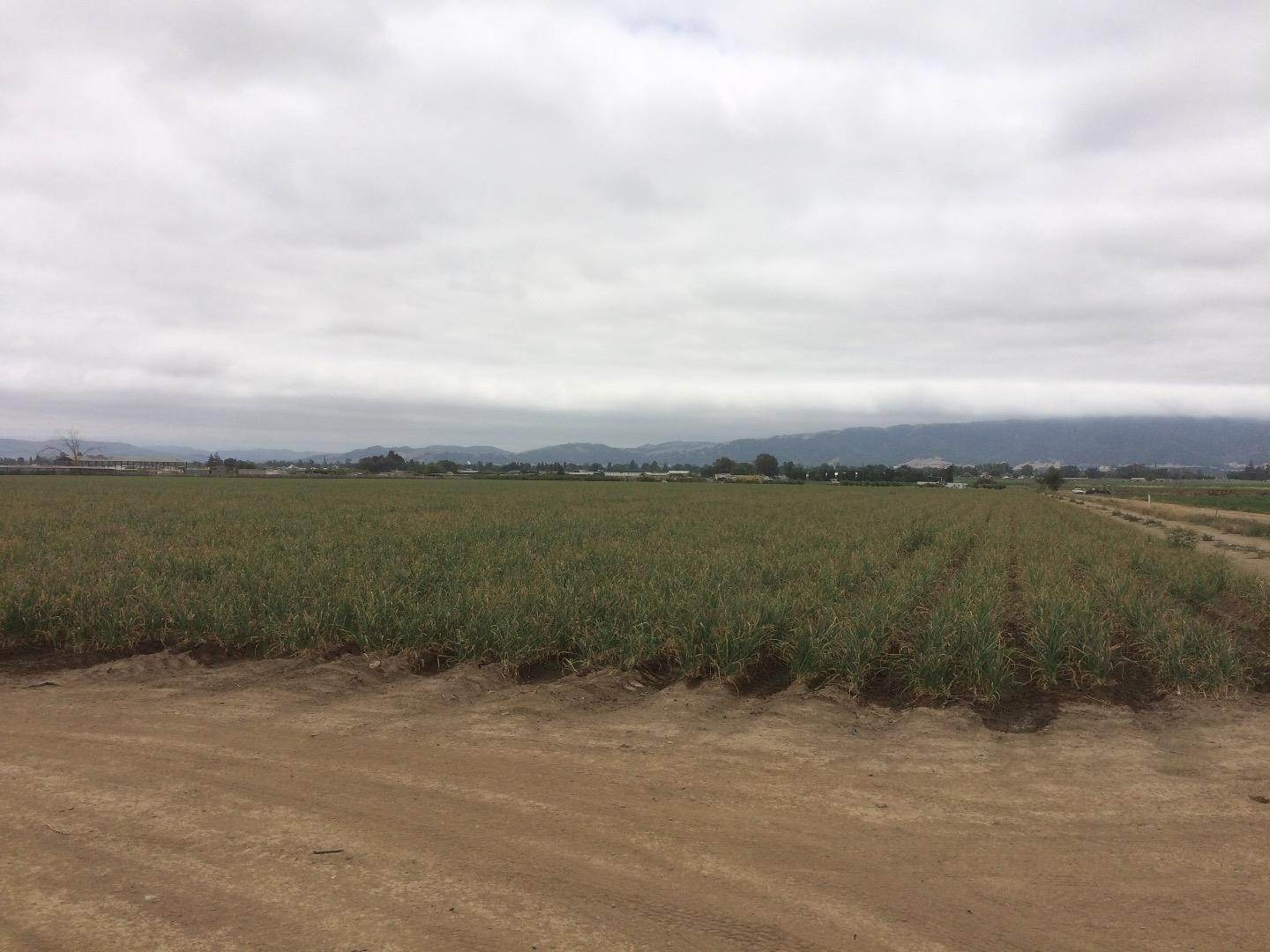 Land for Sale at 2658 Ferguson Gilroy, California 95020 United States