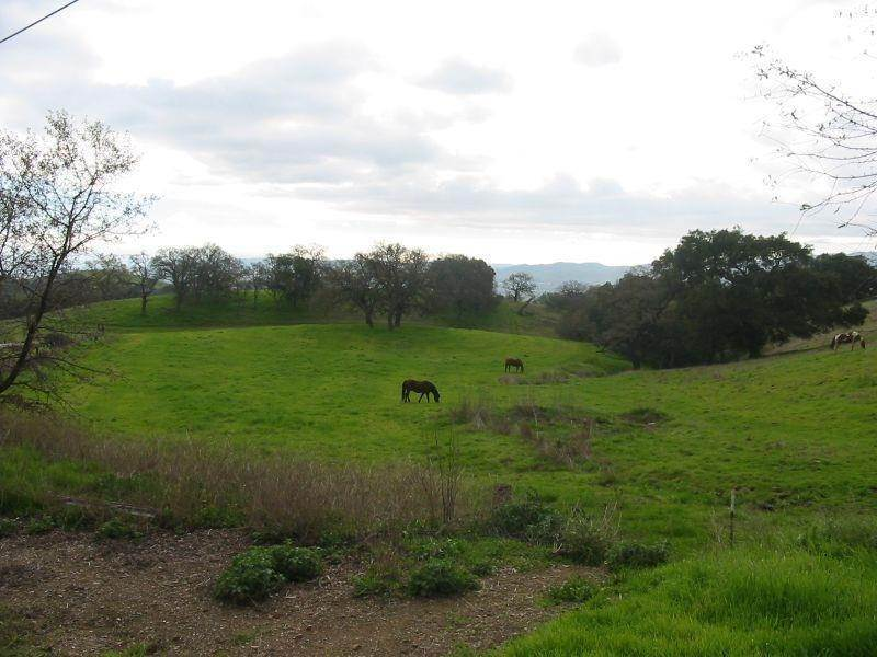 Land for Sale at 8655 Leavesley Road Gilroy, California 95020 United States