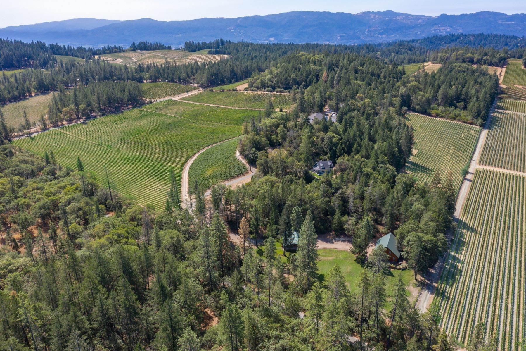 Single Family Homes at Premium Howell Mountain Cabernet Vineyard 700 Las Posadas Road Angwin, California 94508 United States