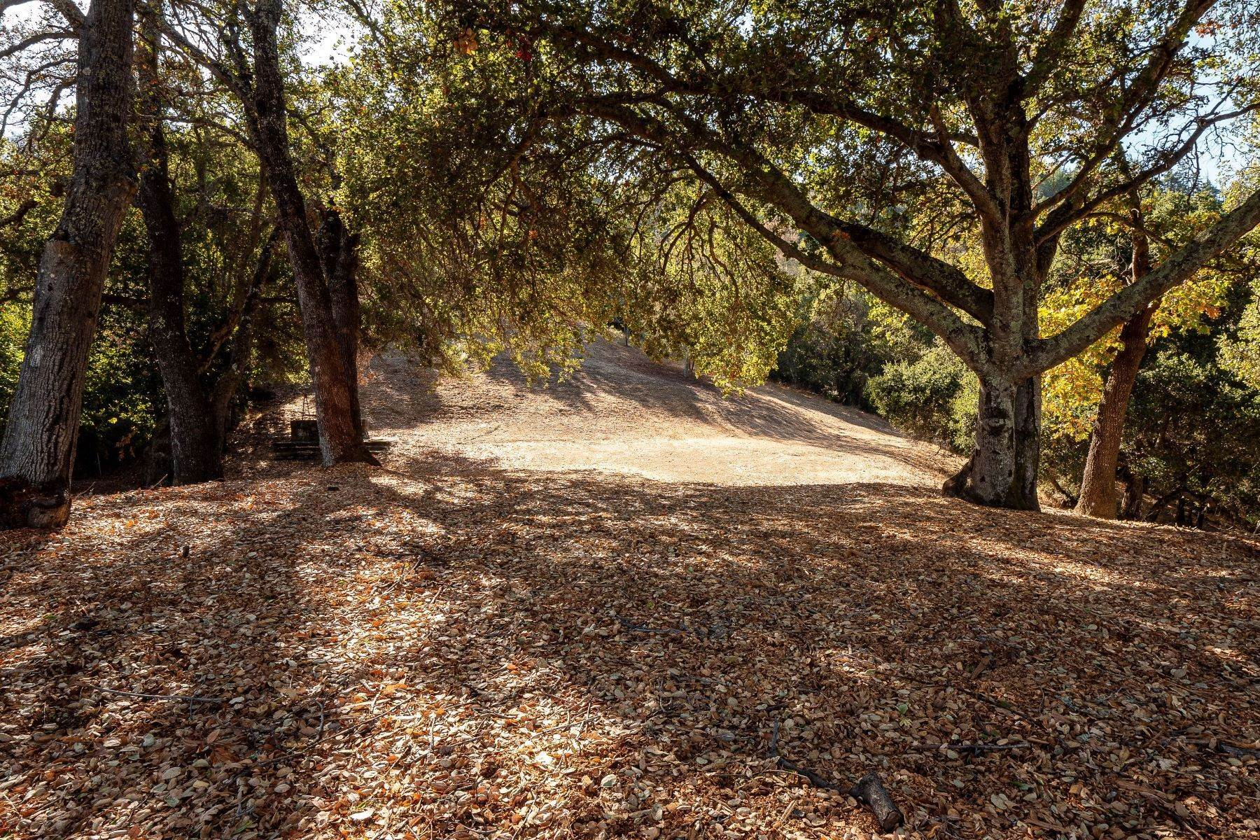 5. Land for Sale at 15400 Madrone Hill Road, Saratoga 15400 Madrone Hill Road Saratoga, California 95070 United States