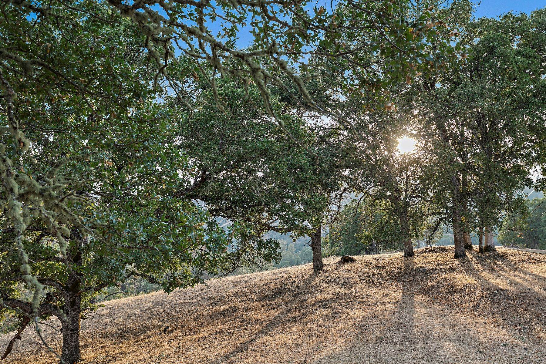 9. Single Family Homes for Sale at Diamond B Ranch 13048 Highway 29 Lower Lake, California 95457 United States