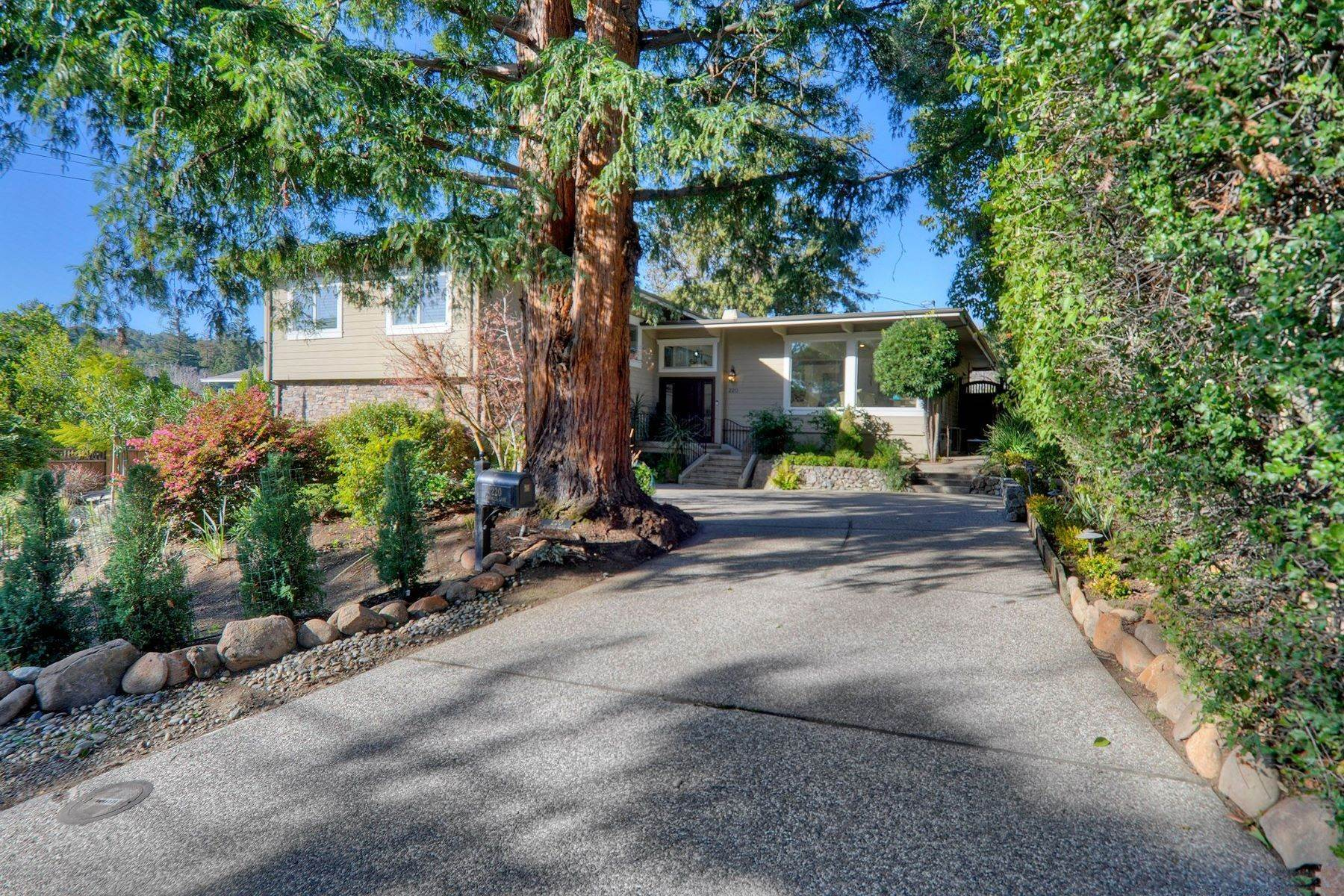 2. Single Family Homes for Sale at Completely Renovated Mid-Century Retreat 220 Frances Lane San Carlos, California 94070 United States